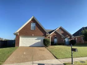 Rental House Arlington 38002