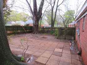 Back Yard/Patio