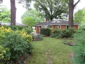 Back Exterior & Yard